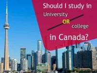 Should I study in University or college in Canada?