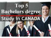 Top 5 Bachelor Degree to Study in Canada