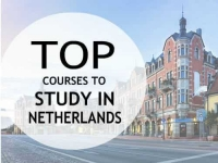Top courses to study in Netherlands