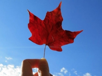 Things to Know Before Studying in Canada for International Students