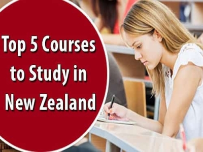 Top 5 Courses to Study in New Zealand