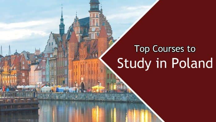 Top courses to study in Poland