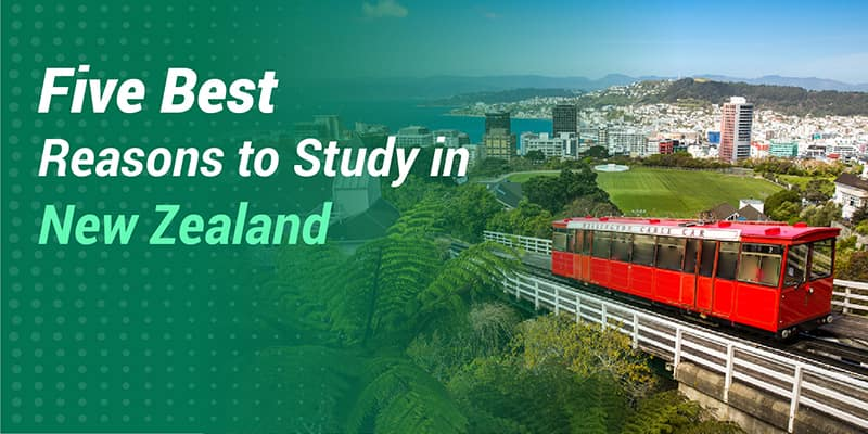 Five best Reasons to Study in New Zealand