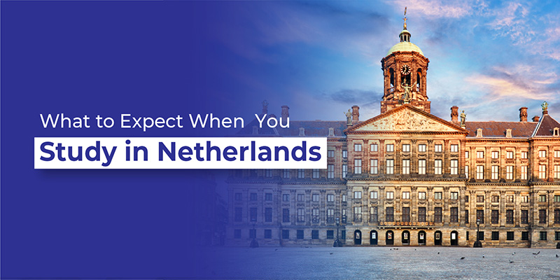 What to Expect When You Study in Netherlands