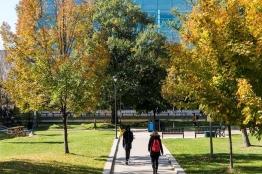 Carleton University-10