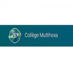 Middle School Multihexa