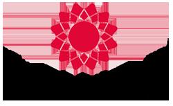 Indian Institute of Craft And Design