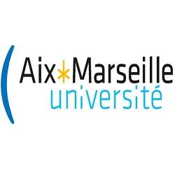 Aix-Marseille University