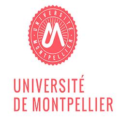 University of Montpellier